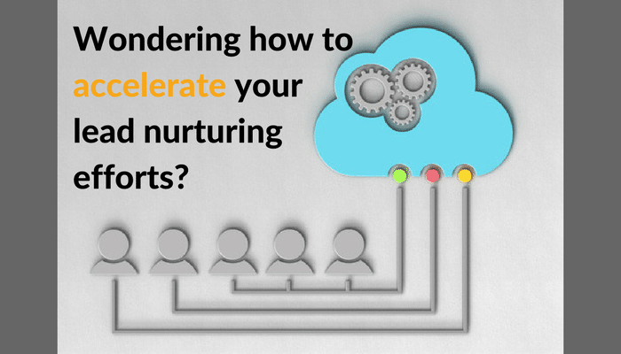 How Data Profiling can Accelerate Your Lead Nurturing Efforts
